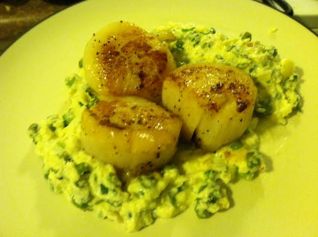 scallop on ricotta mash